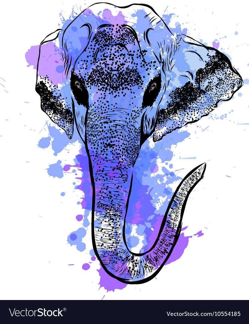 Watercolor elephant portrait on white background