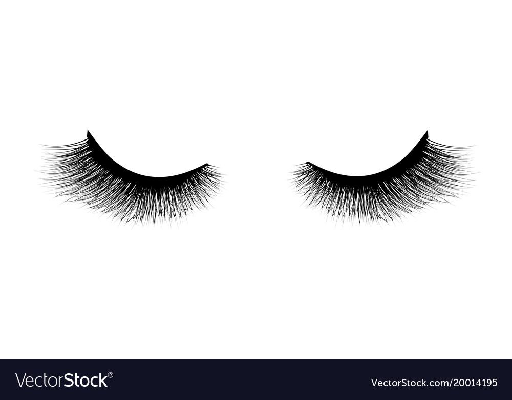 Eyelash extension a beautiful make-up thick vector image