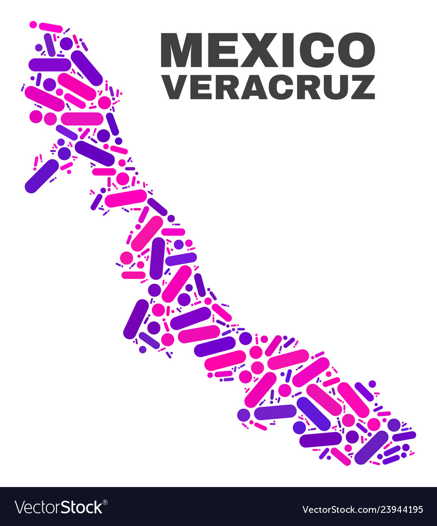 Mosaic Veracruz State Map Of Dots And Lines Vector Image