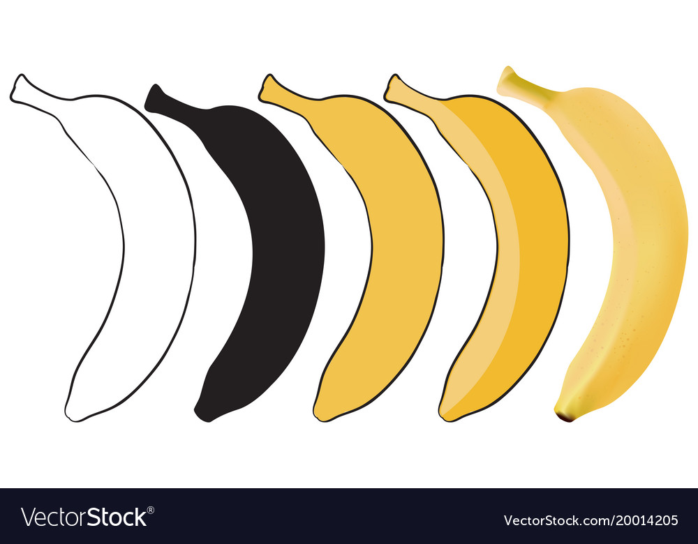 Banana set from outline sketch to 3d
