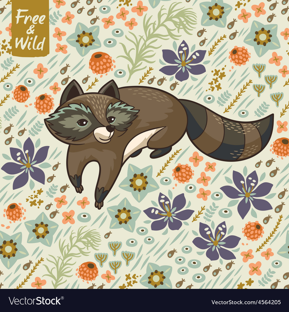 Funny little raccoon