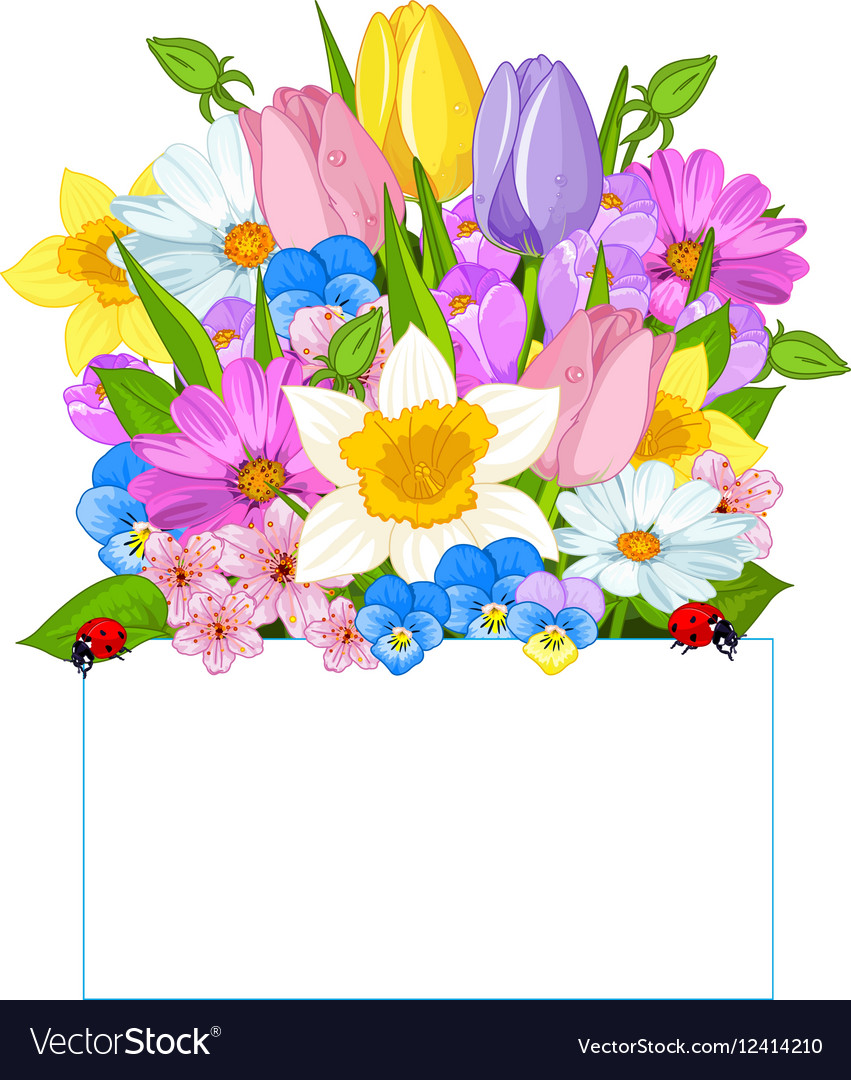 Colorful Fresh Spring Flowers Royalty Free Vector Image