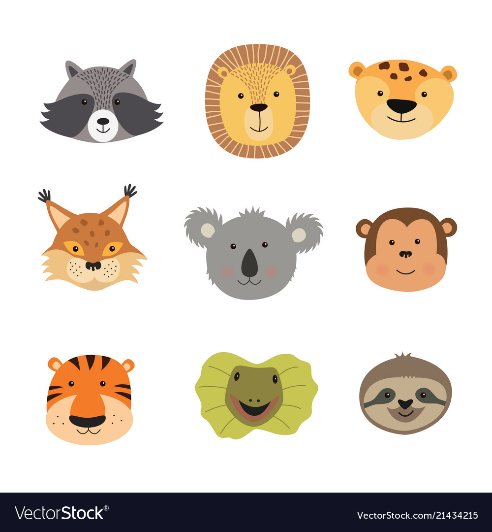 Animal faces including