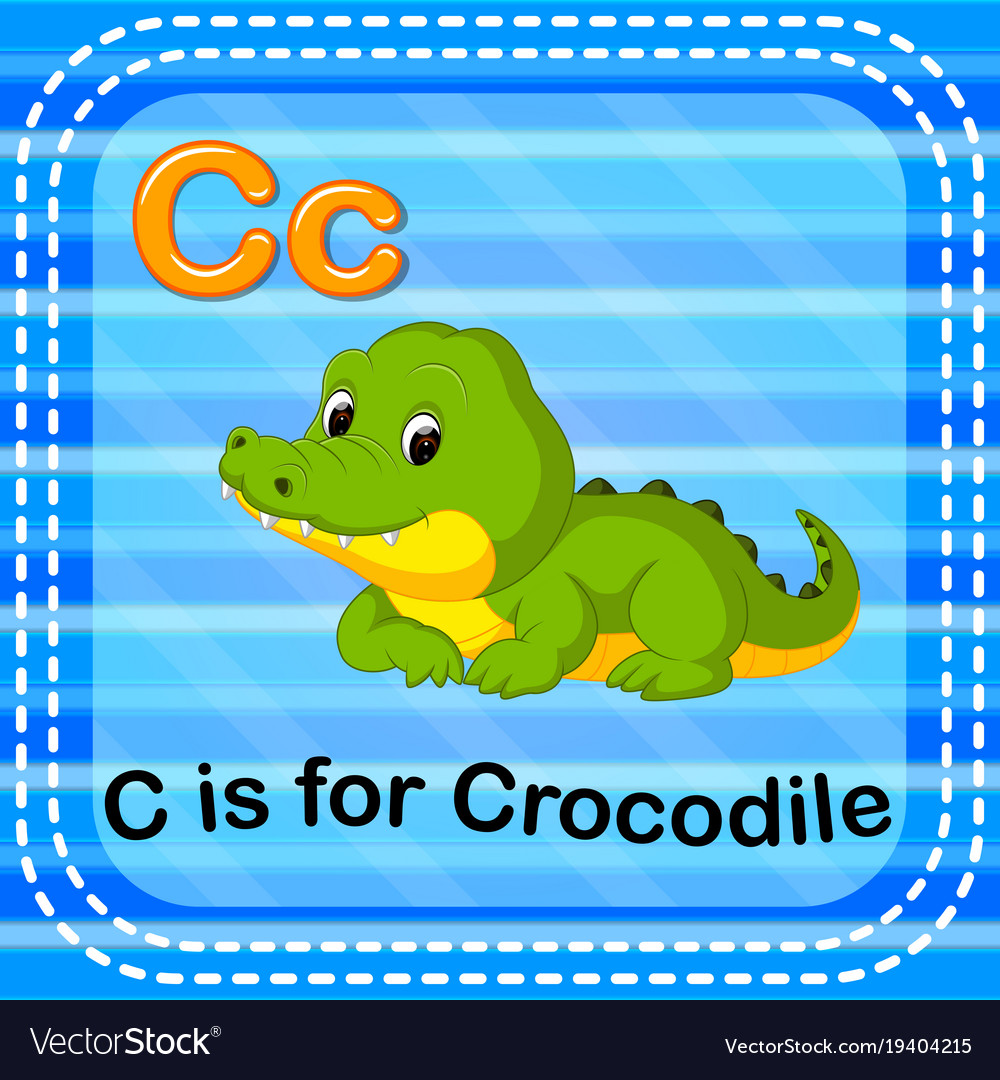 Flashcard Letter C Is For Crocodile Royalty Free Vector