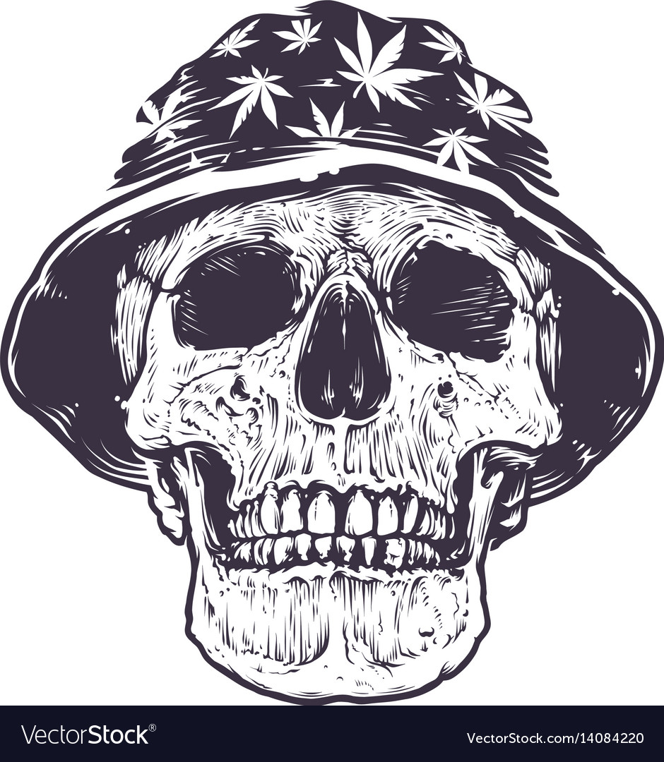 Rasta skull in hat vector image