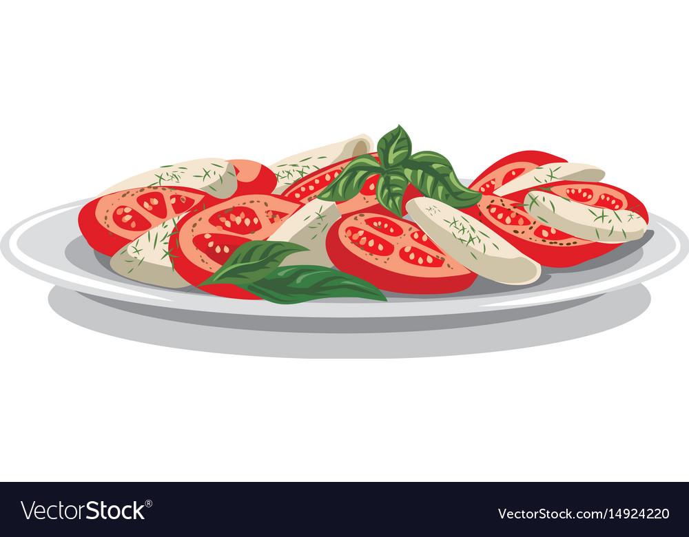 Salad with mozzarella vector image