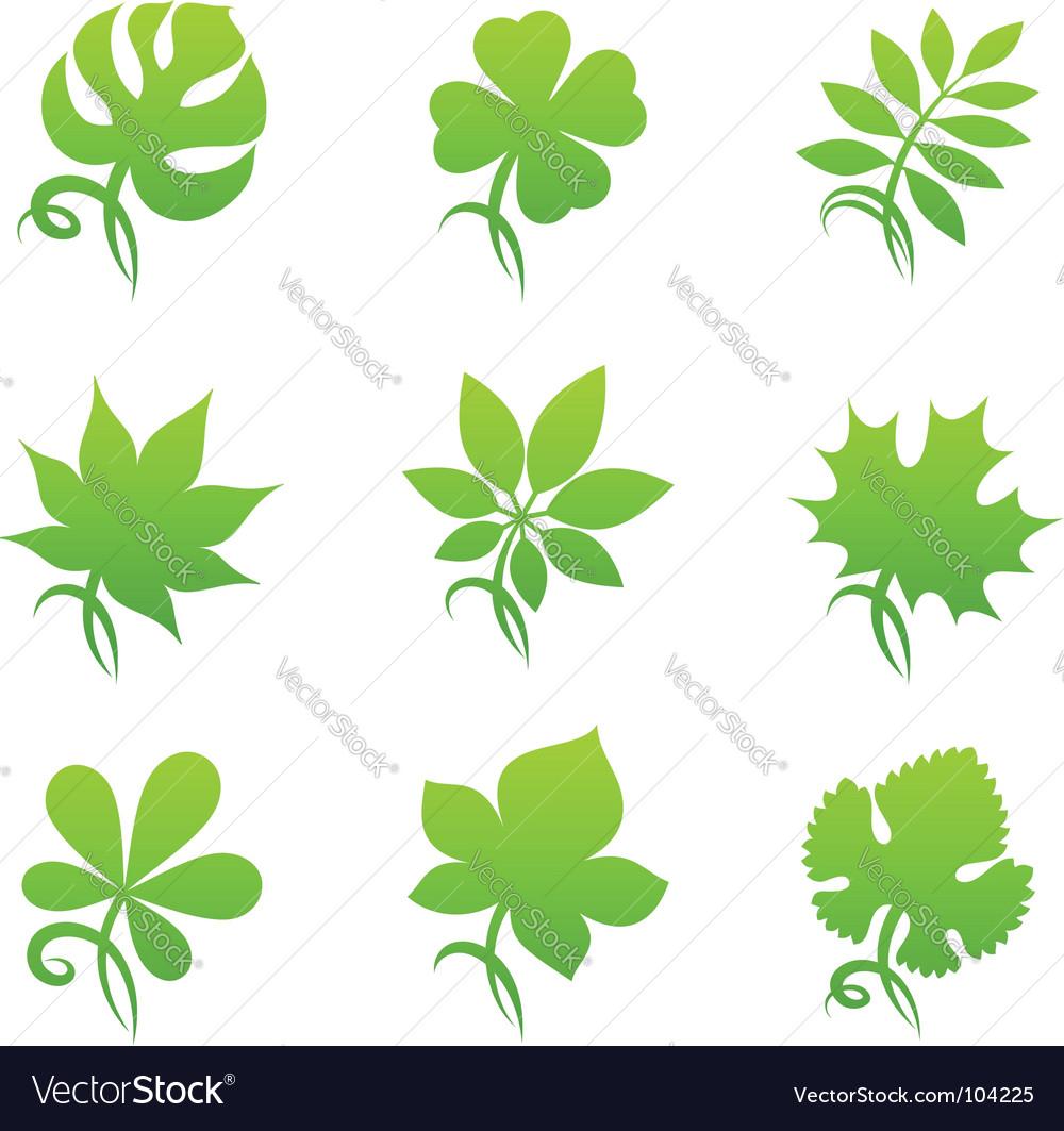 Leaves elements for design vector image