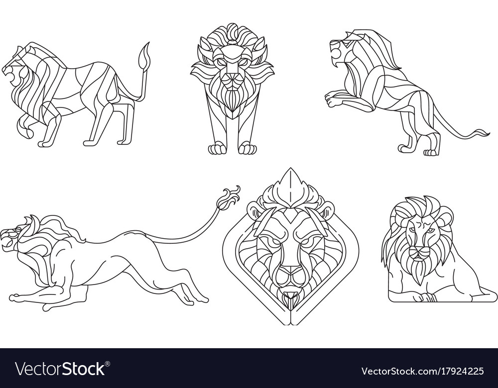 Earless Seal Sea Lion Clip Art Outline Cliparts Png Download