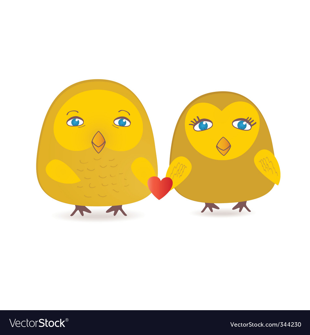Cute birds couple in love vector image