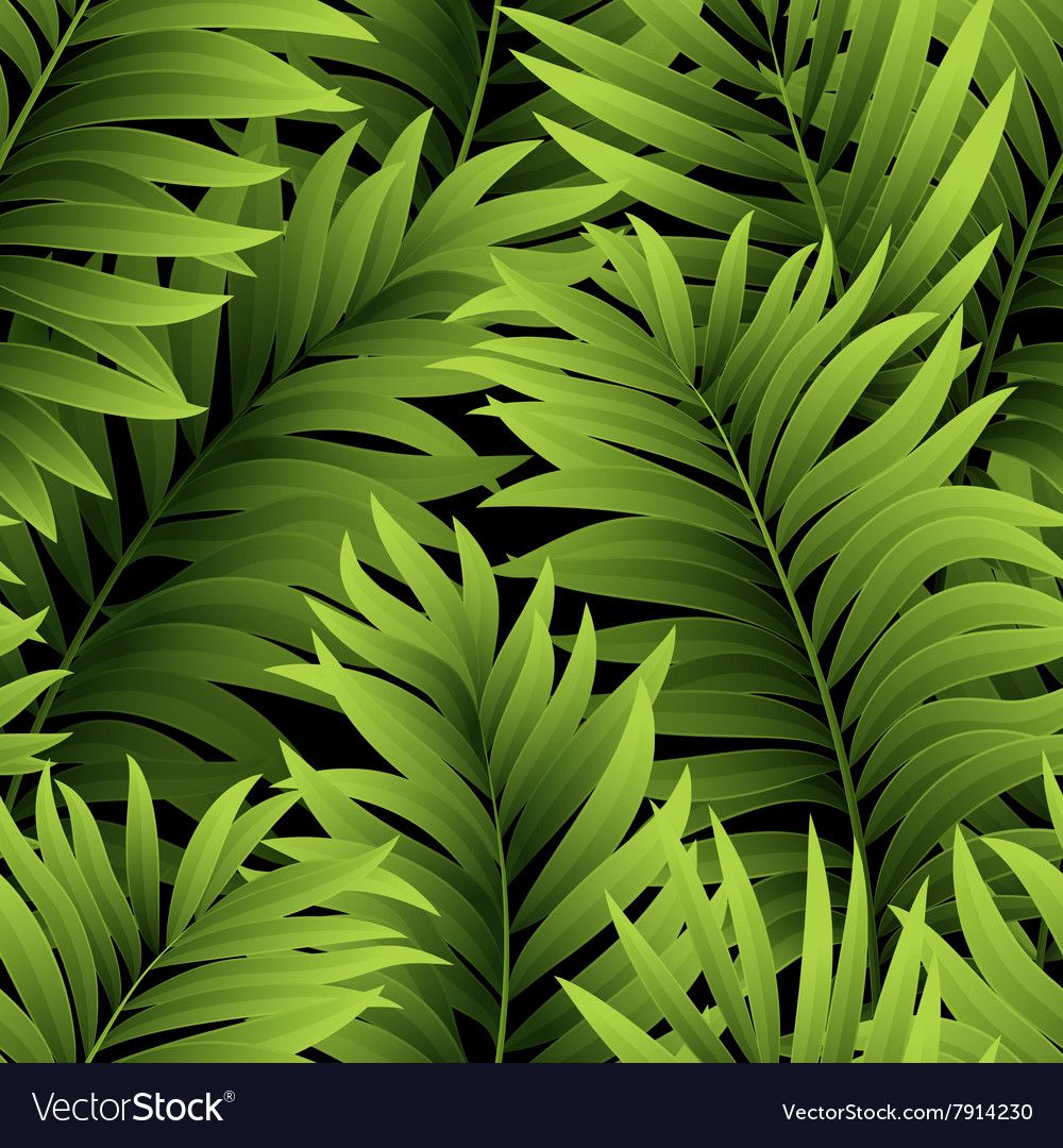 Leaves of palm tree Seamless pattern
