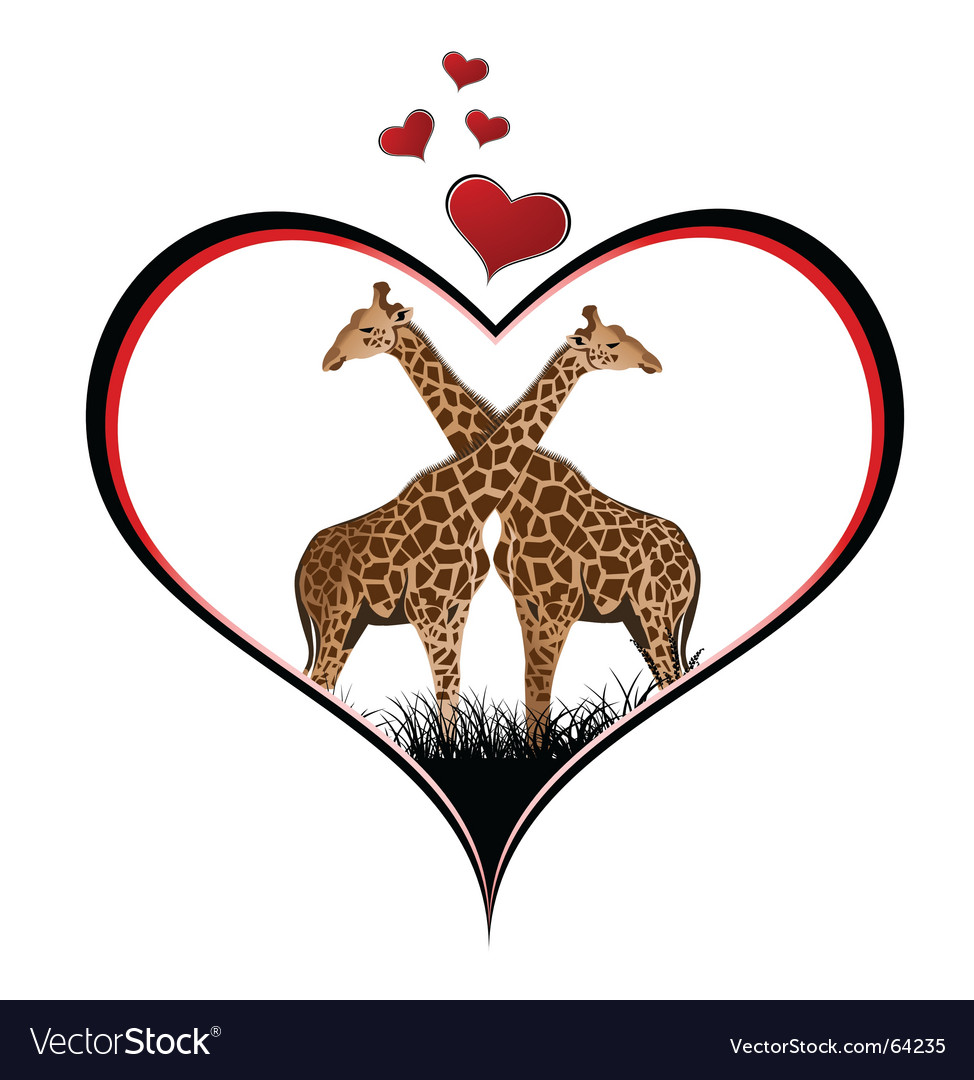 Giraffe heart vector image