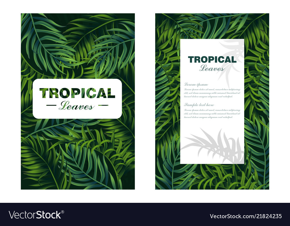 Tropic leaves card realistic detailed 3d