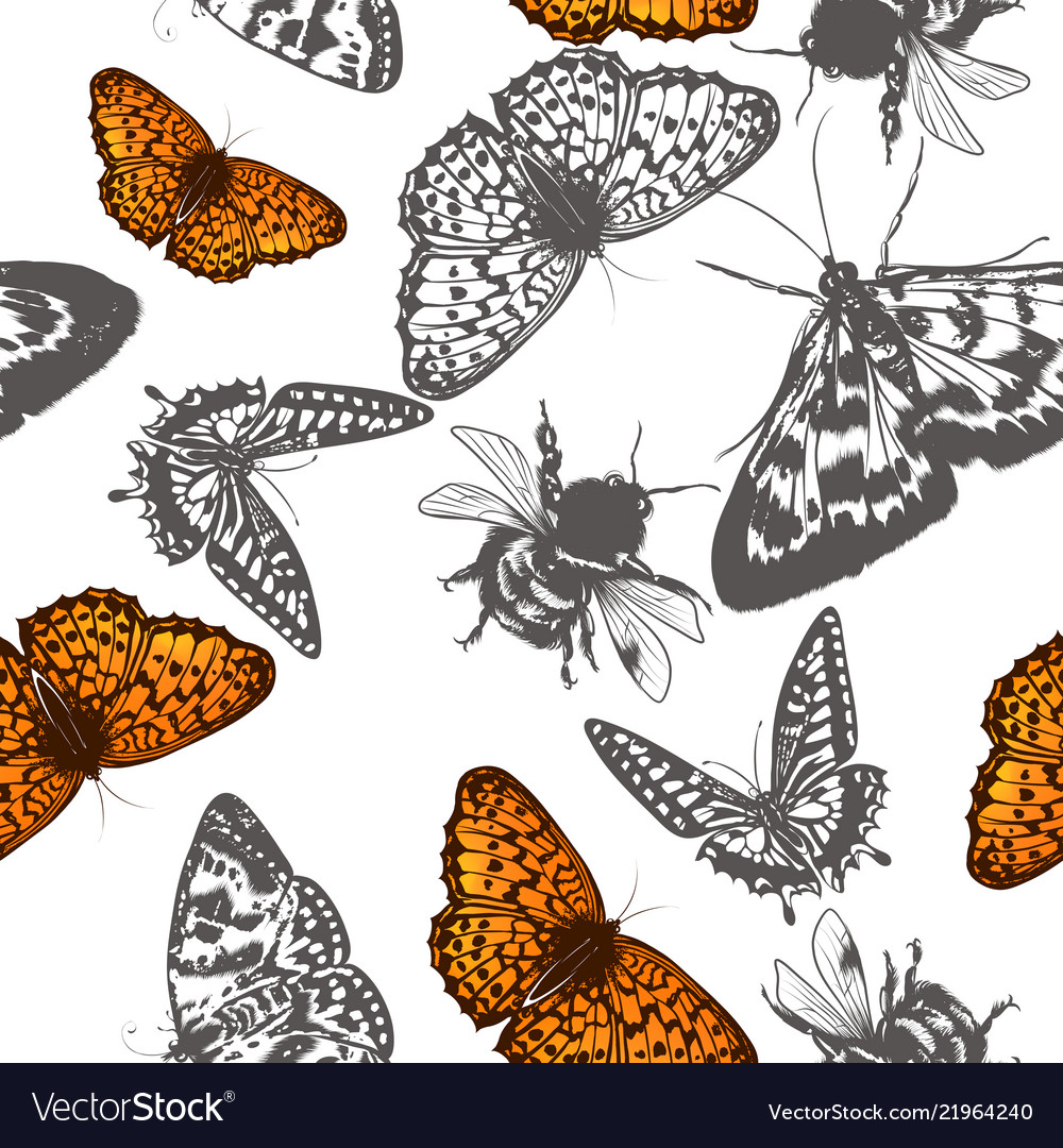 Butterfly pattern for design