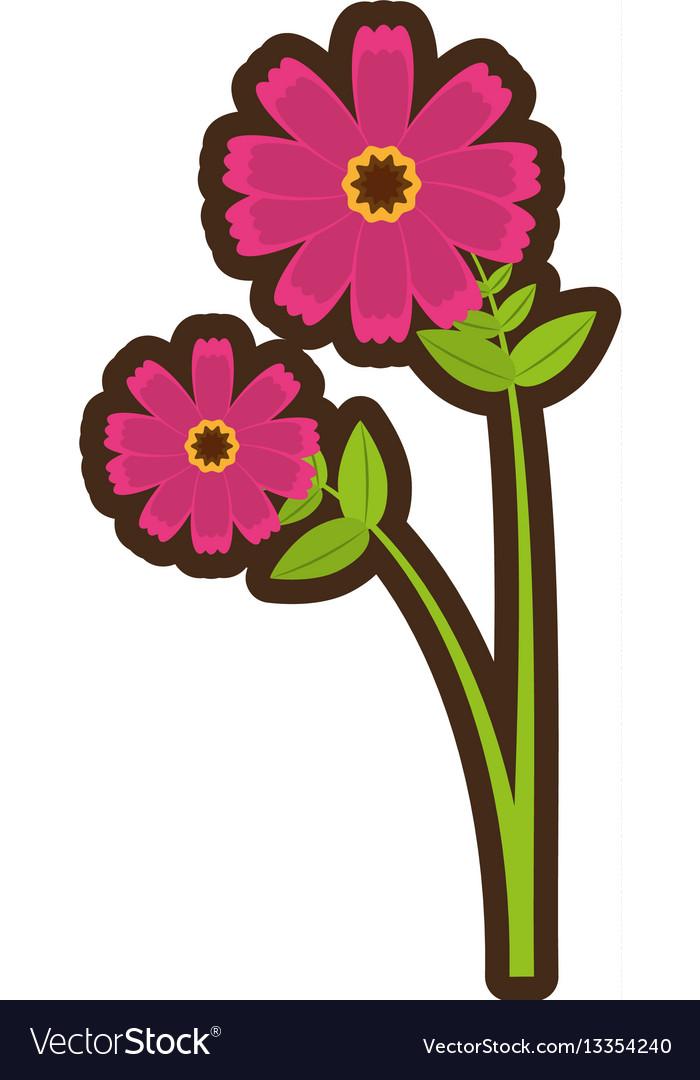 Cartoon pink cosmos flower spring icon royalty free vector cartoon pink cosmos flower spring icon vector image mightylinksfo