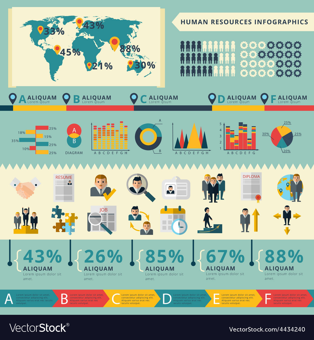 human resources infographic report presentation vector image
