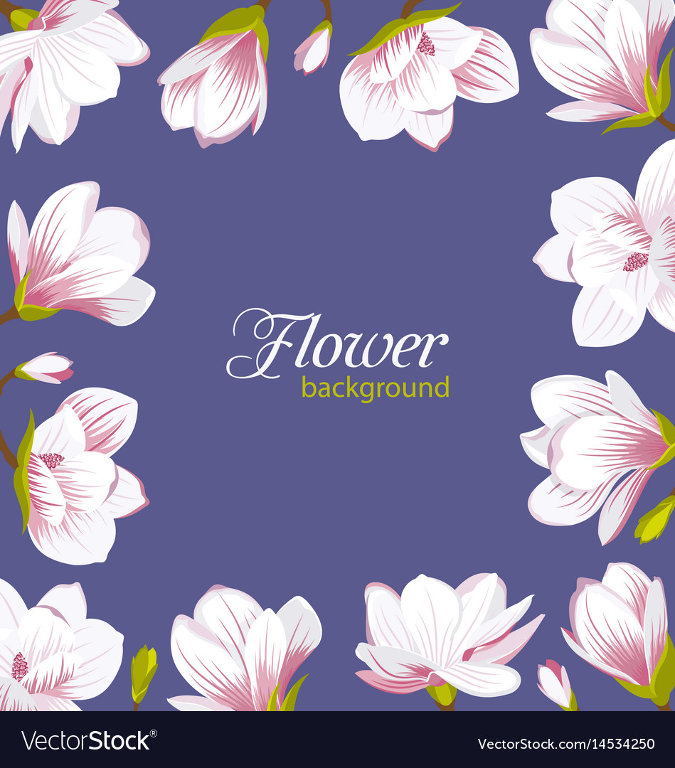 Old border made of beautiful magnolia flowers vector image