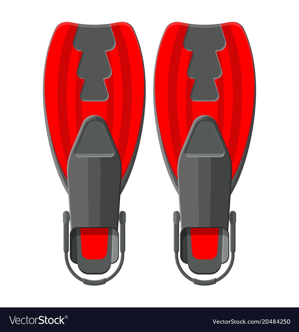 Swimming flippers diving equipment