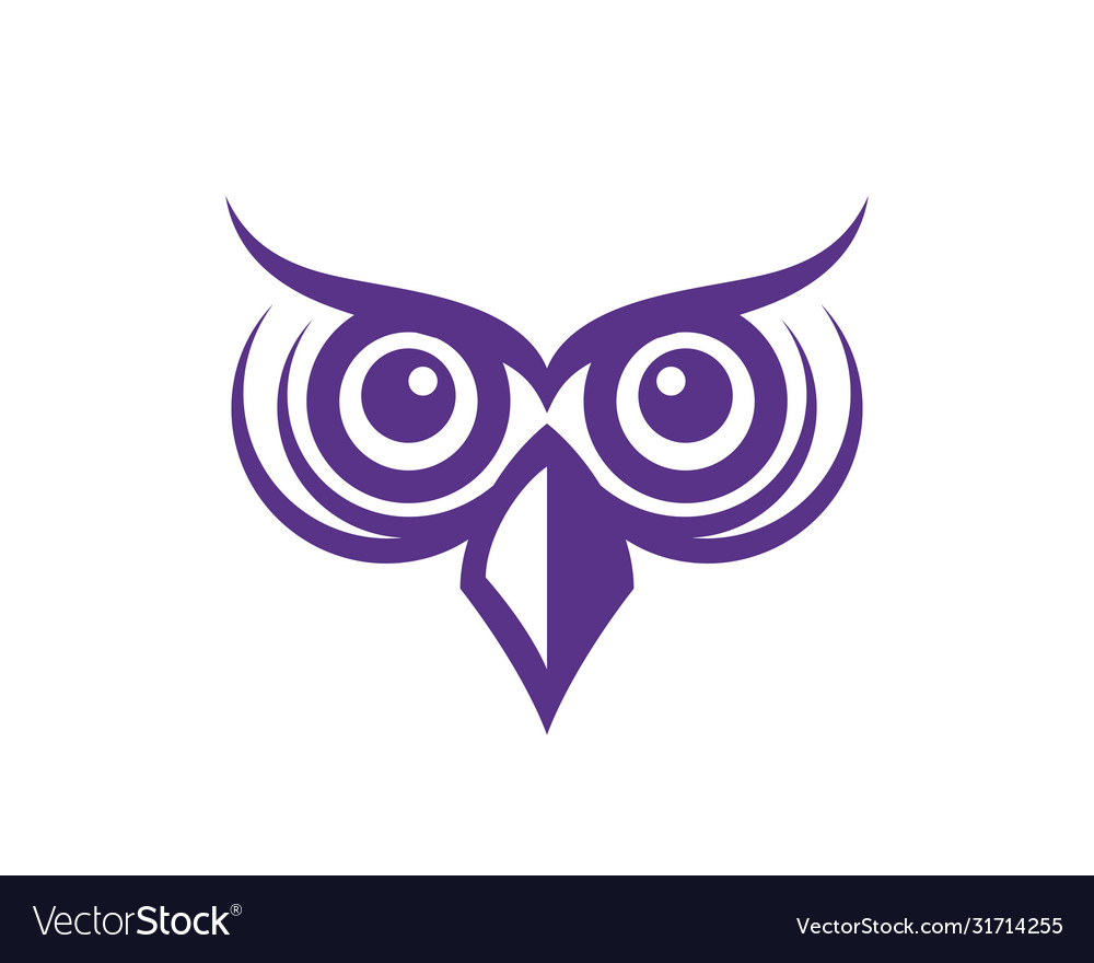 Owl bird logo template