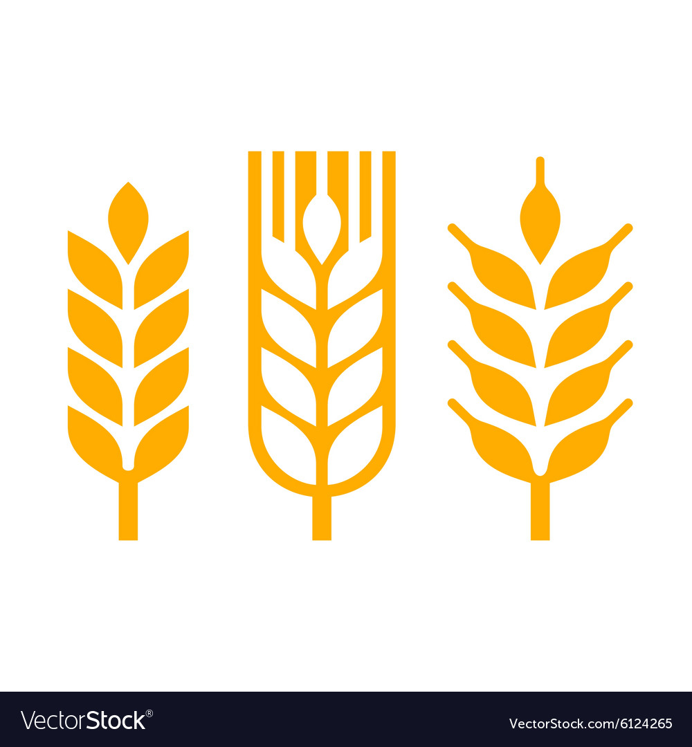 Wheat Ear Spica Icon Set