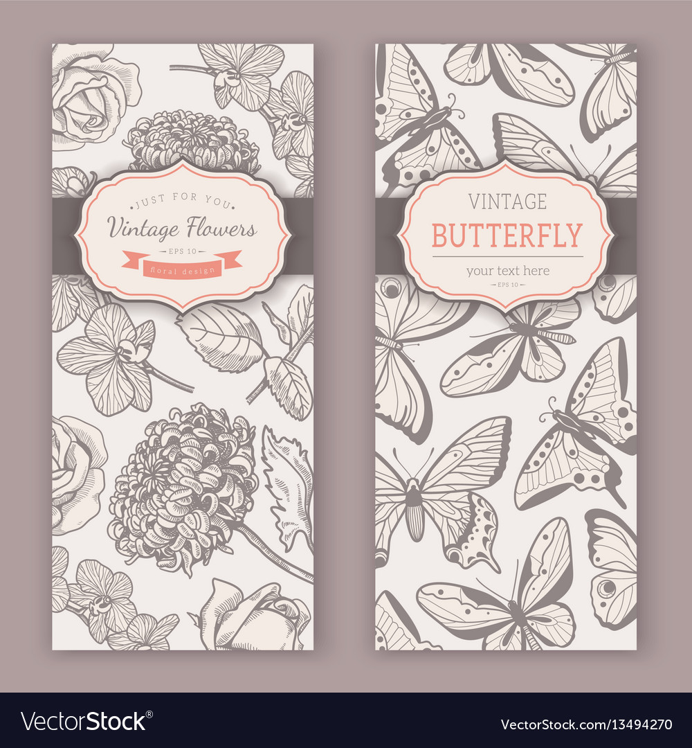 Sketch flowers and butterflies vector image
