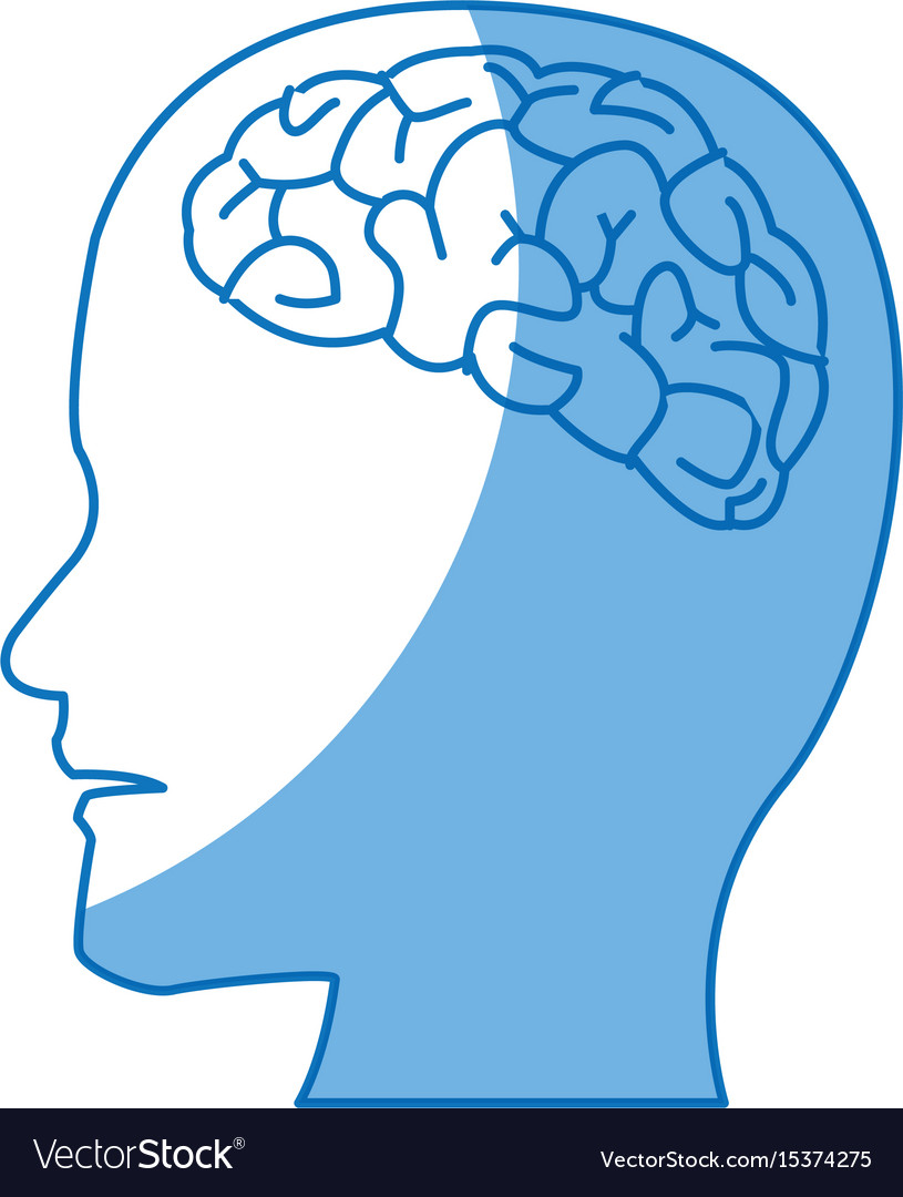 Profile human head with brain anatomy Royalty Free Vector