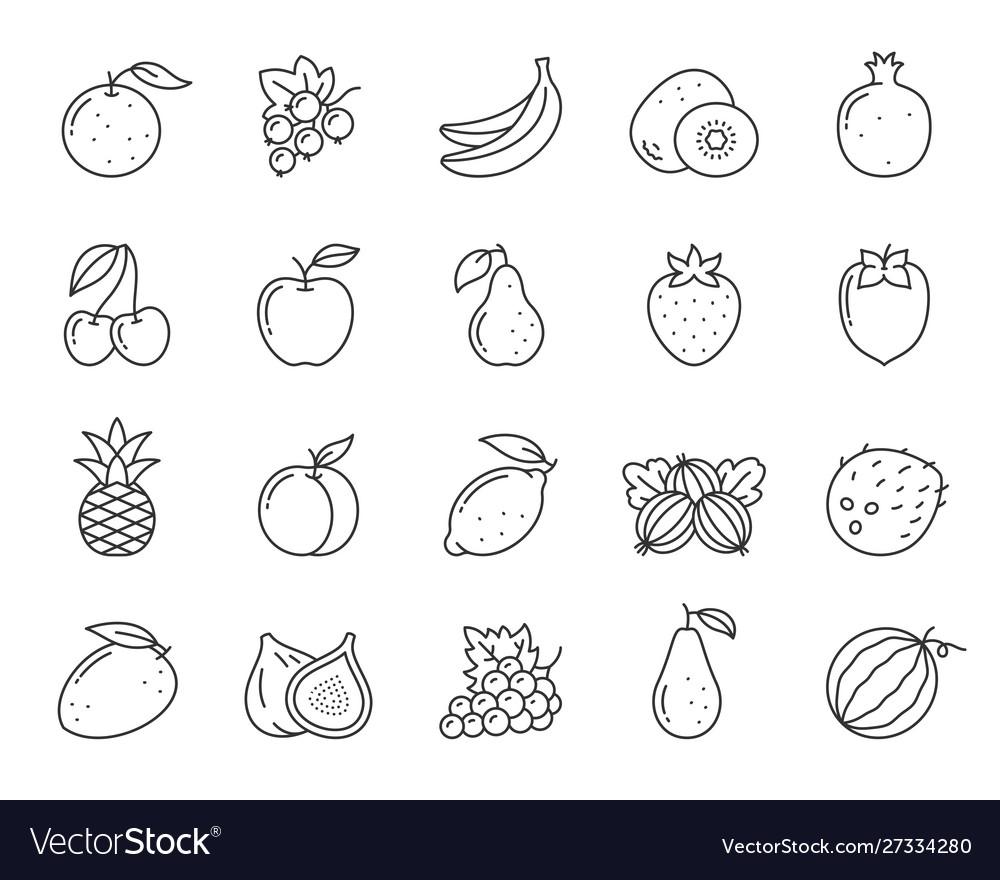 Fruit berry food orange kiwi line icon set
