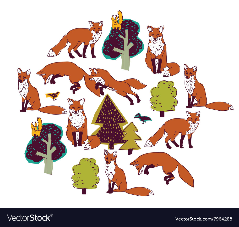 Fox forest color isolate objects white round