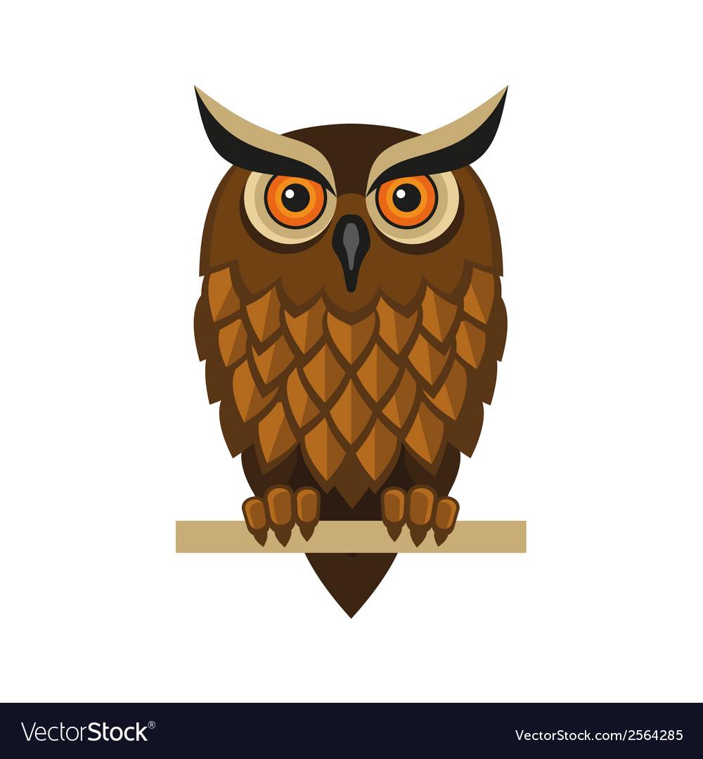 Owl Isolated on White