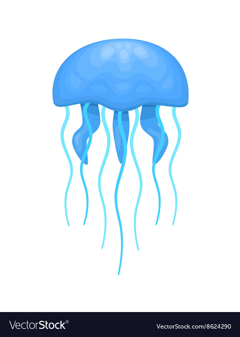 blue and cyan jellyfish royalty free vector image rh vectorstock com jellyfish vector free jellyfish vector art