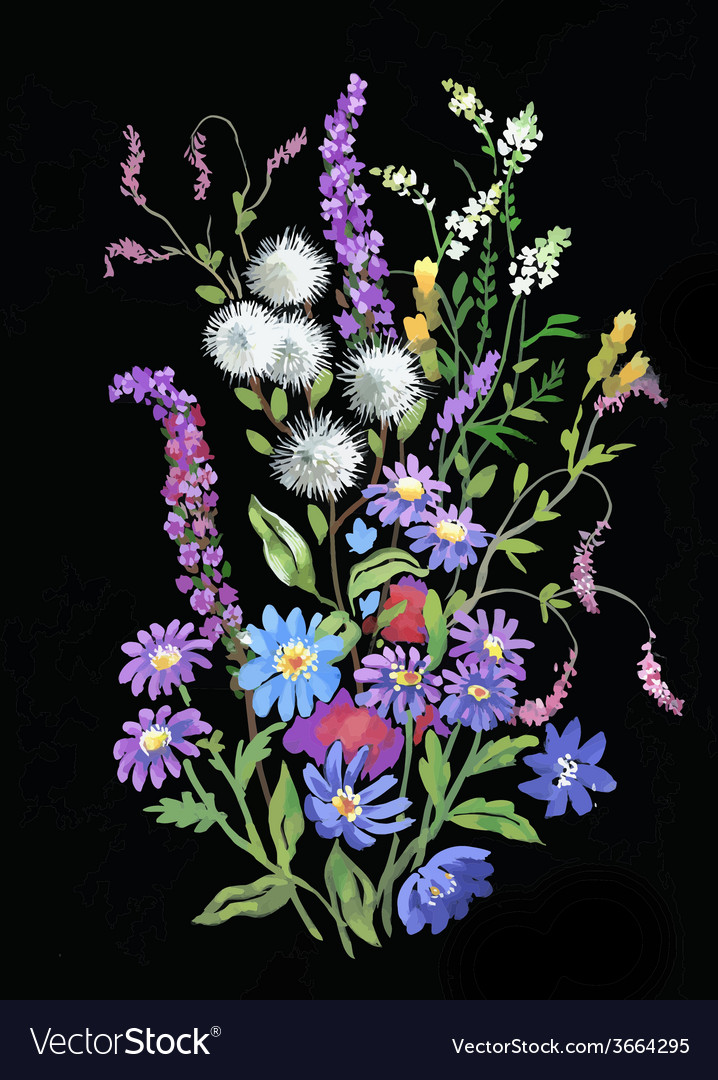 Colorful watercolor wildflowers