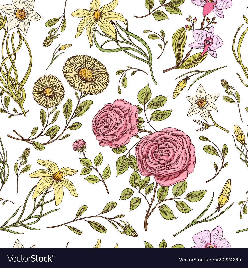 Seamless pattern roses with leaves and buds
