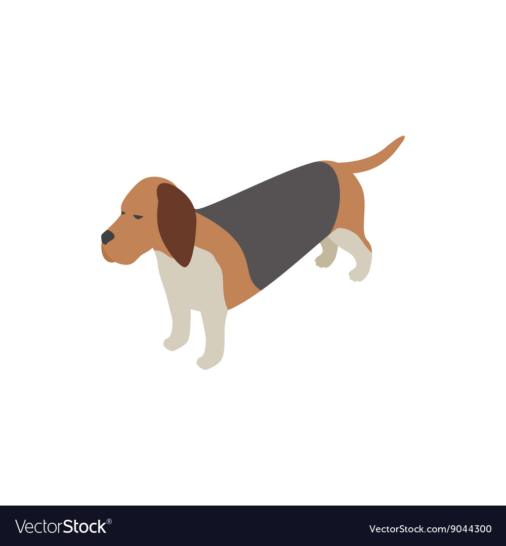 Basset hound dog icon isometric 3d style vector image
