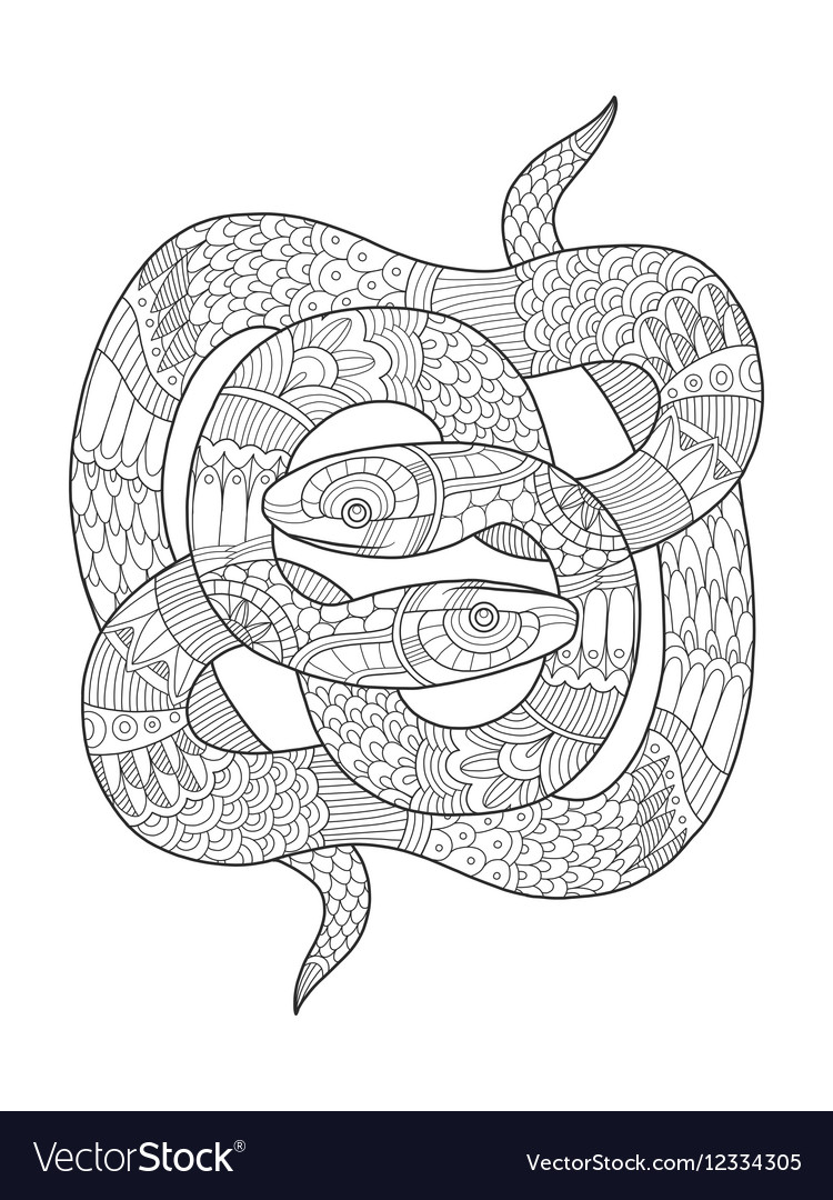 Snake coloring book for adults Royalty Free Vector Image
