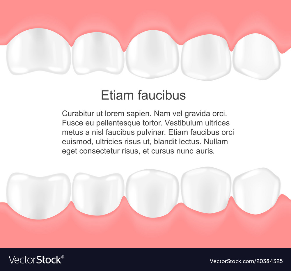 Human teeth in mouth infographics dental care