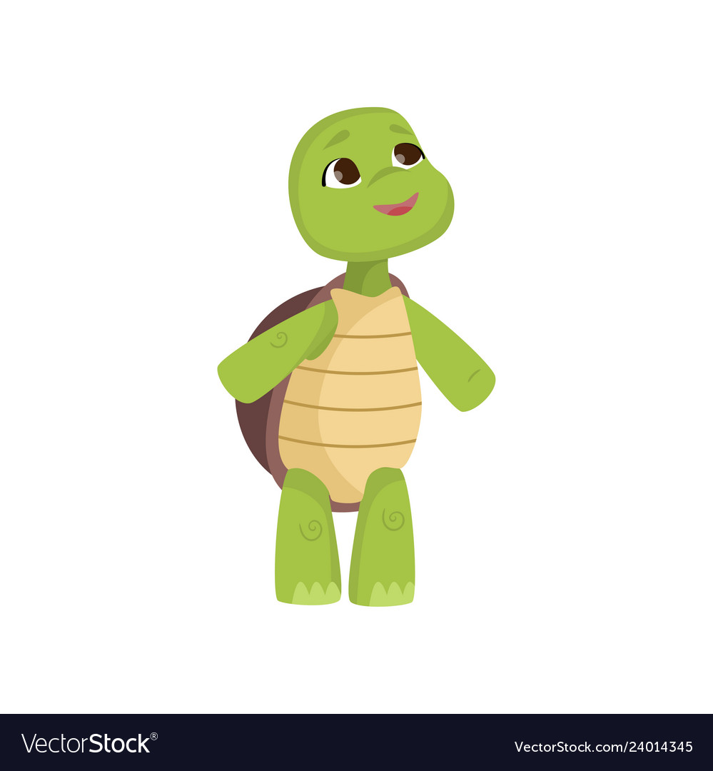 Turtle Tortoise Up Vector Images 61