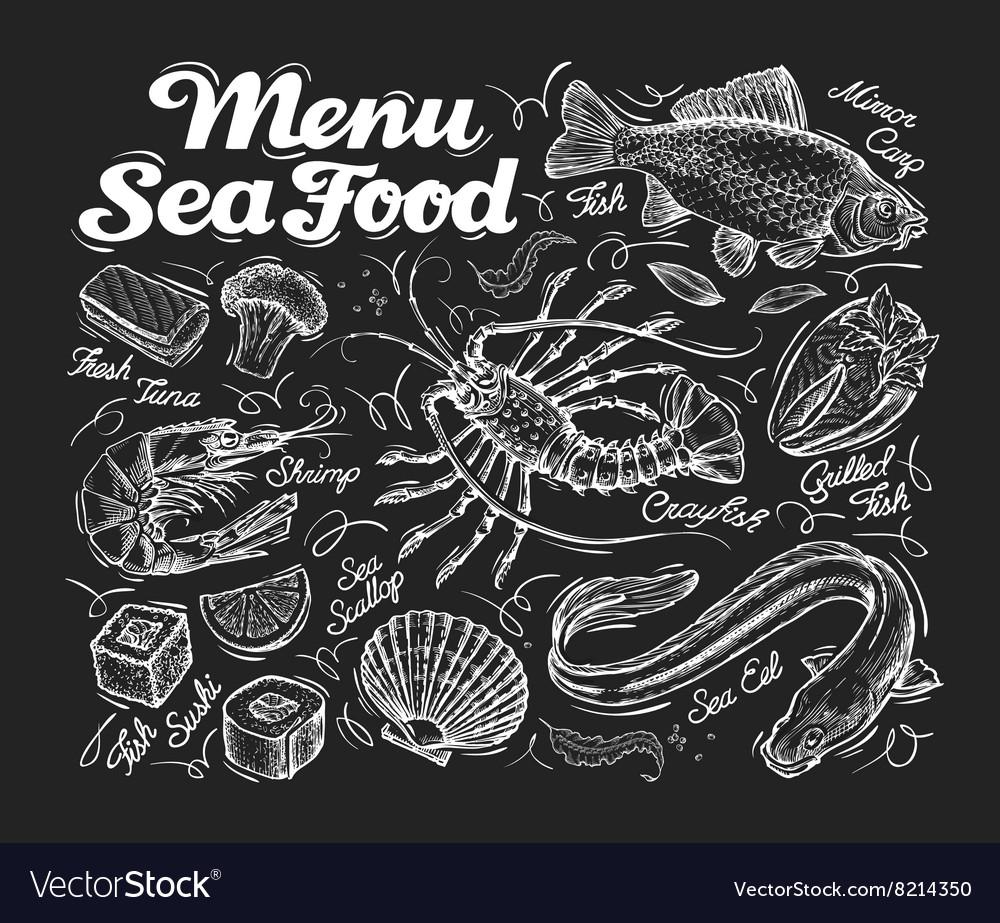 Menu seafood Hand drawn fish carp sea eel vector image