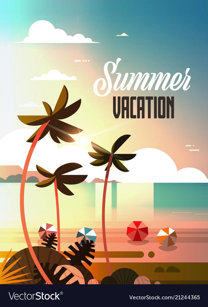 Sunset tropical palm beach balls view summer