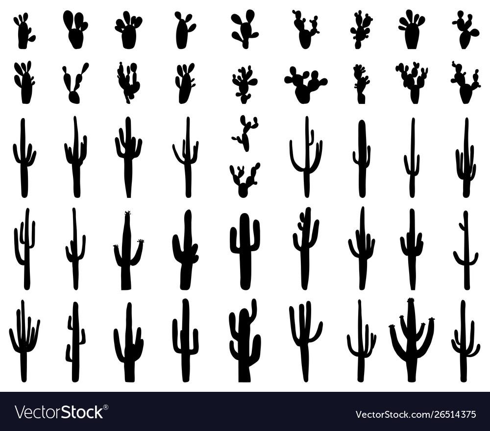 Silhouettes different cactus