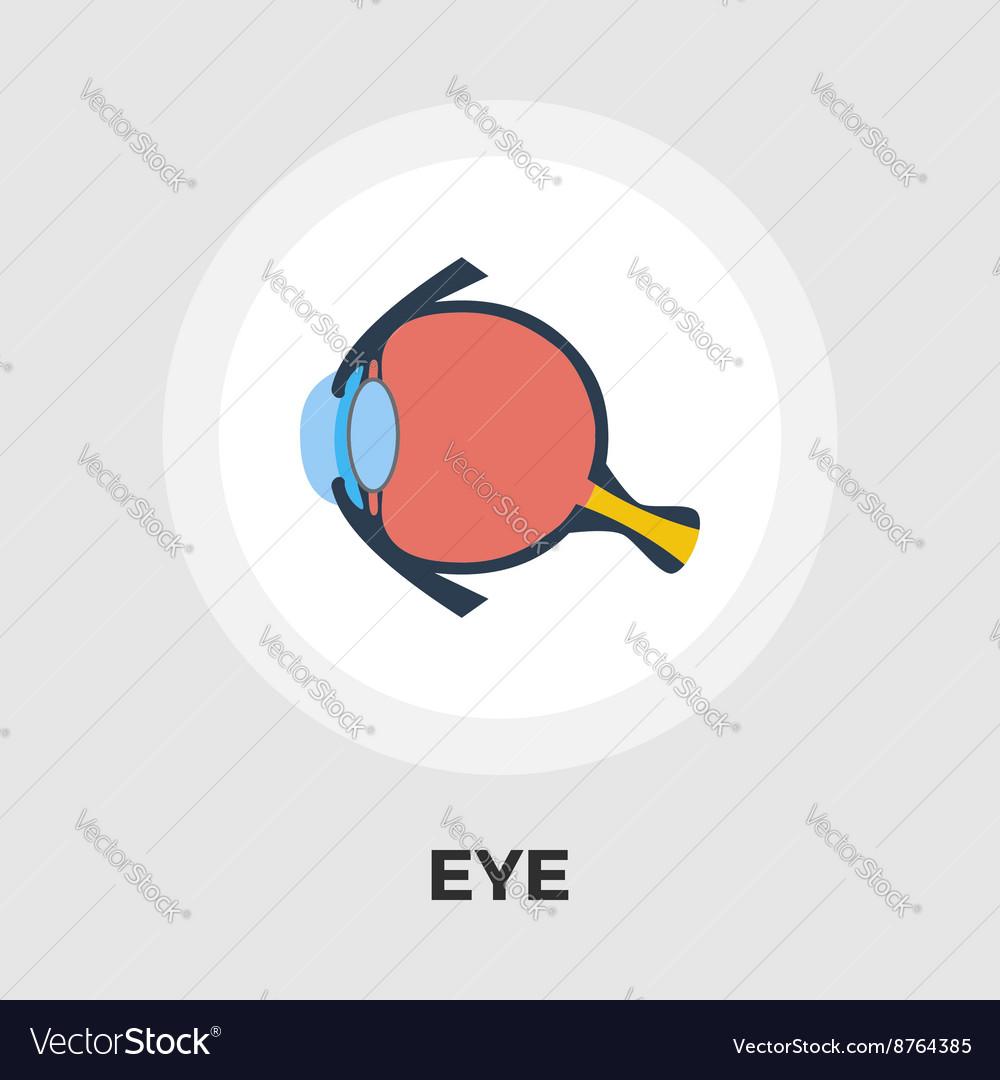 Anatomy eye flat icon Royalty Free Vector Image