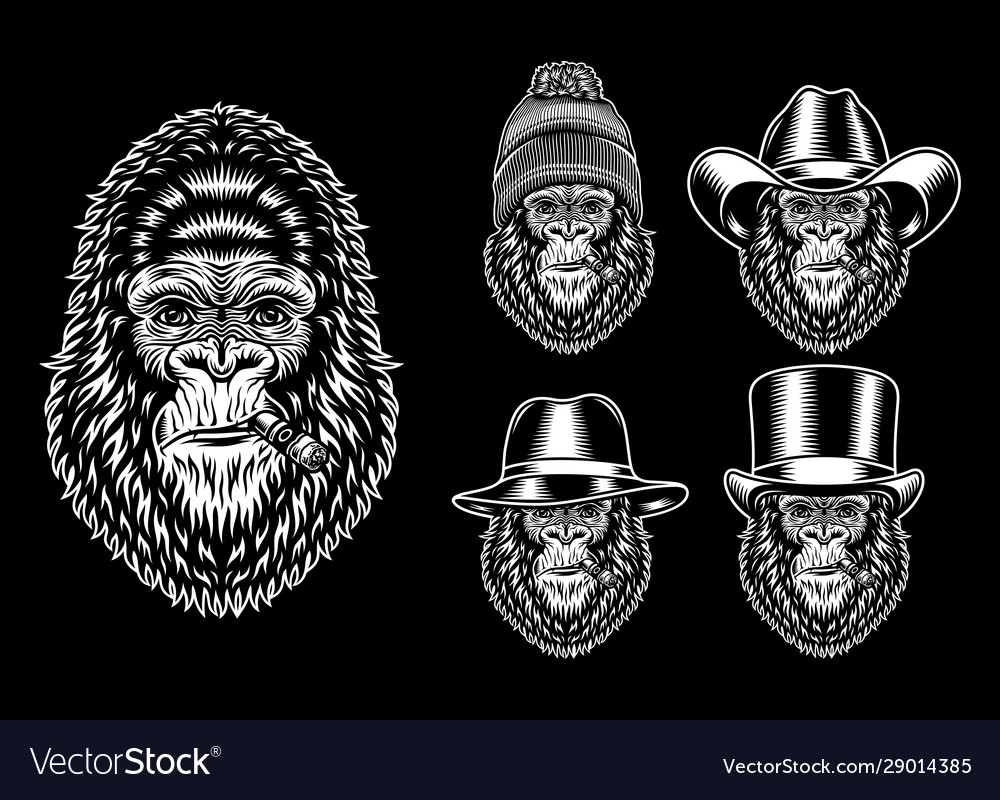 Collection gorilla smoking characters