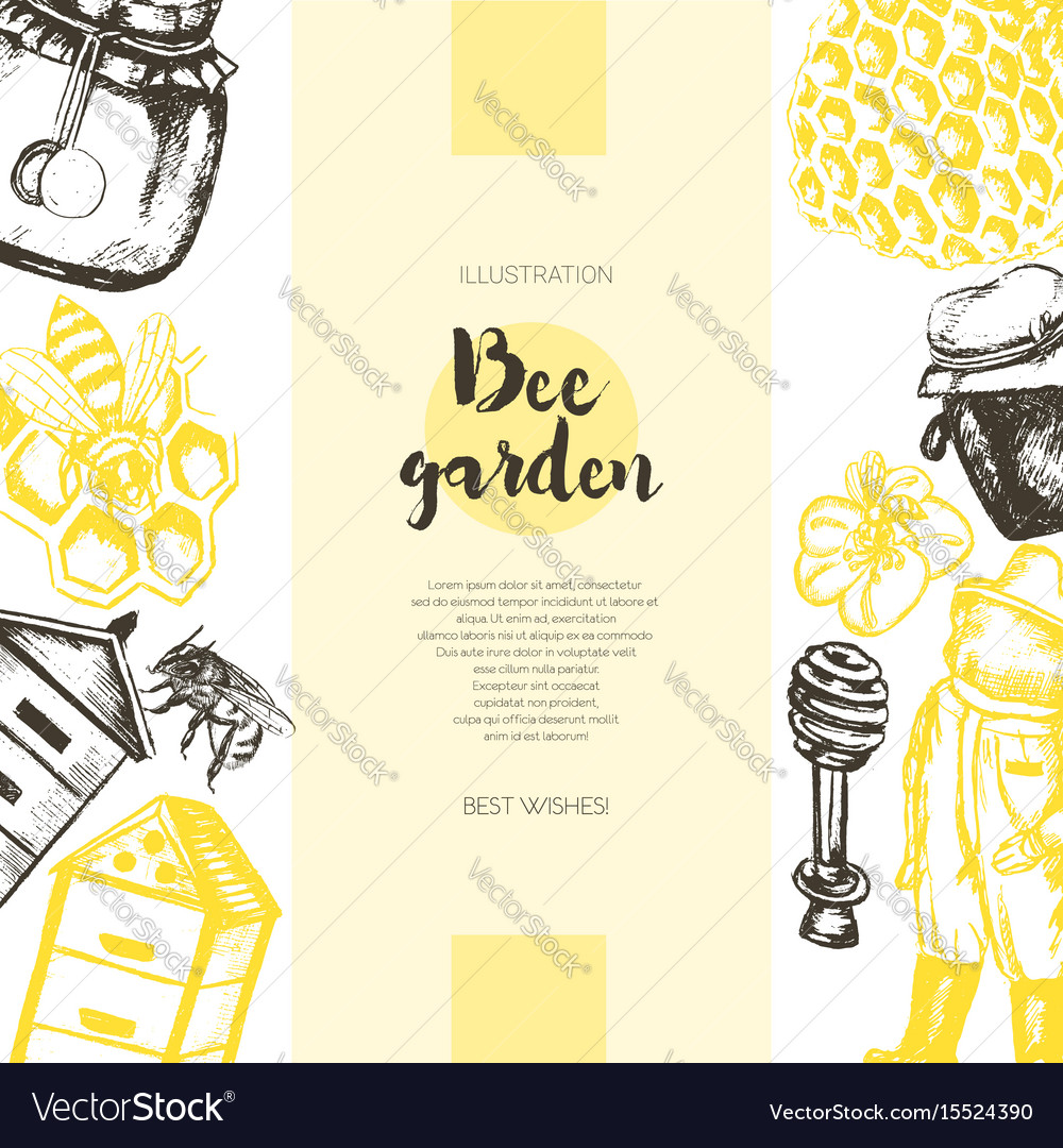 Bee garden - color drawn vintage banner template vector image