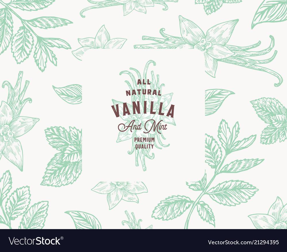 Hand drawn mint and vanilla background