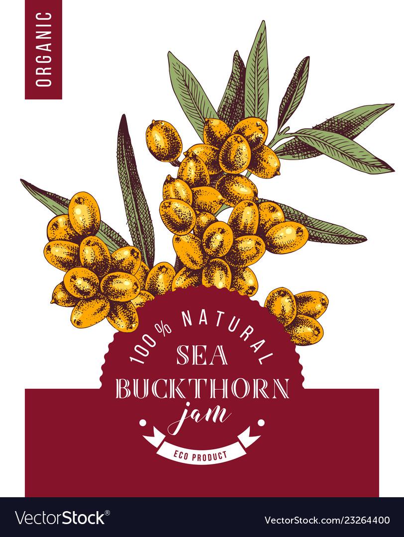 Sea buckthorn jam emblem