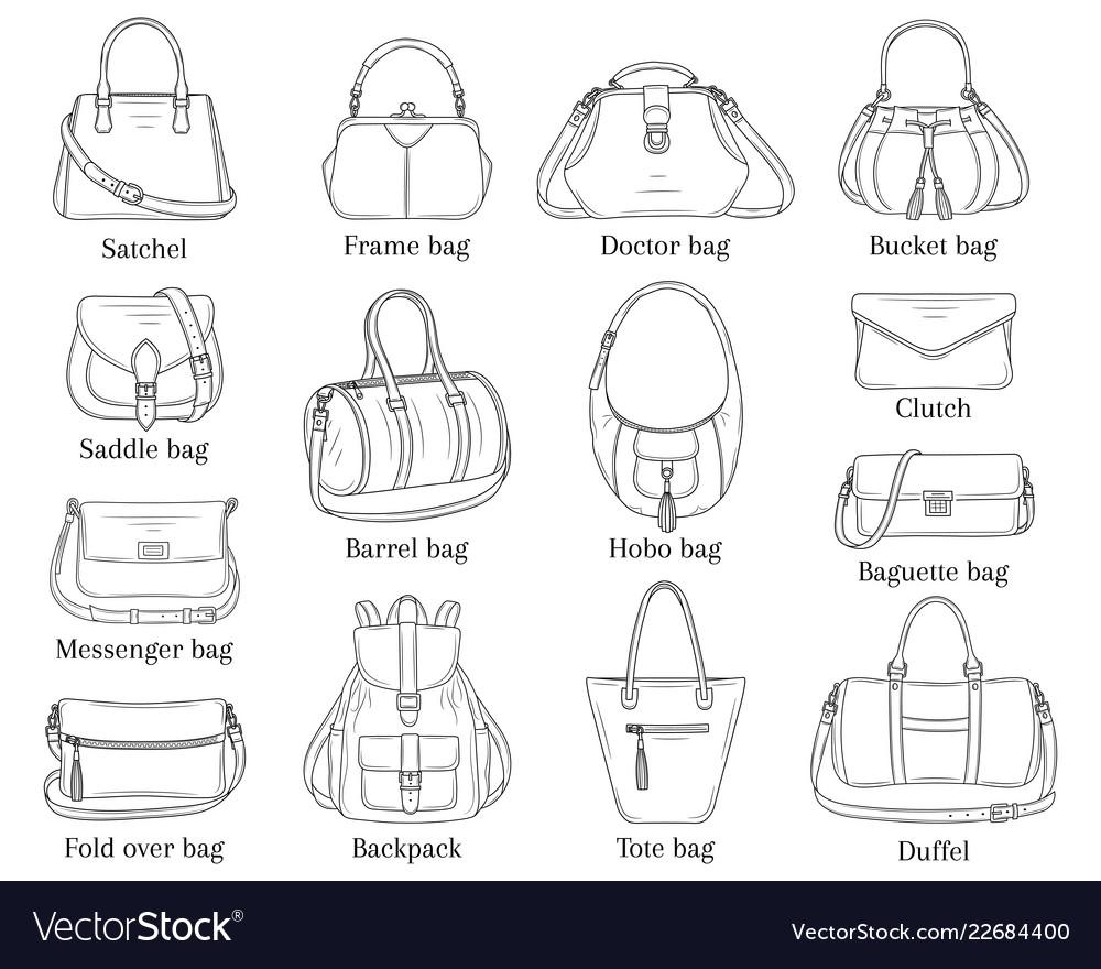 Women fashion handbags collection sketch