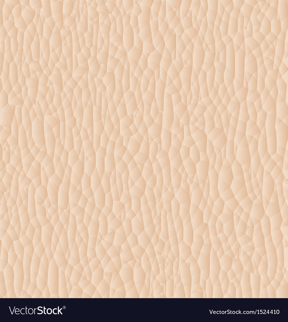 Leather texture closeup for background vector image