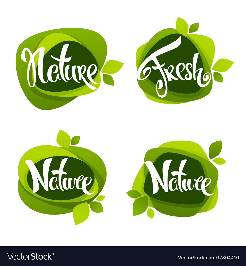 Nature lettering collection of leaf labels vector image