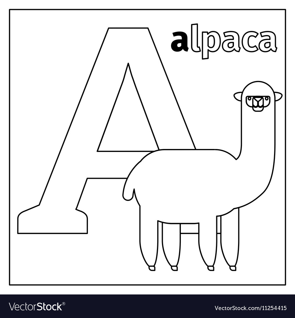 Alpaca letter A coloring page Royalty Free Vector Image