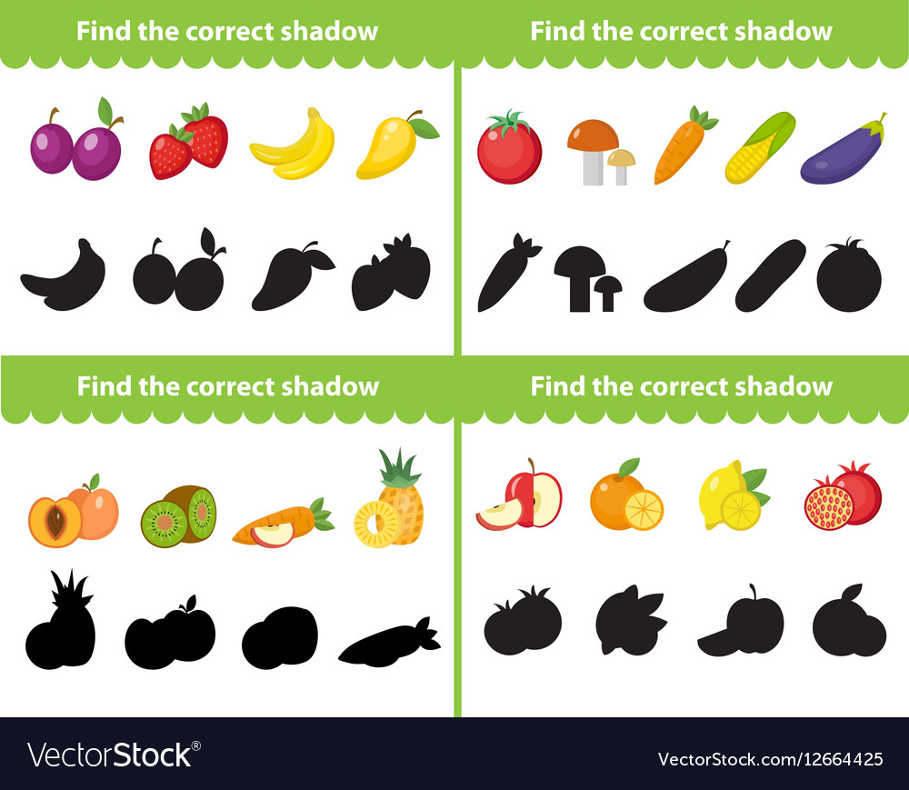 Childrens educational game find correct shadow