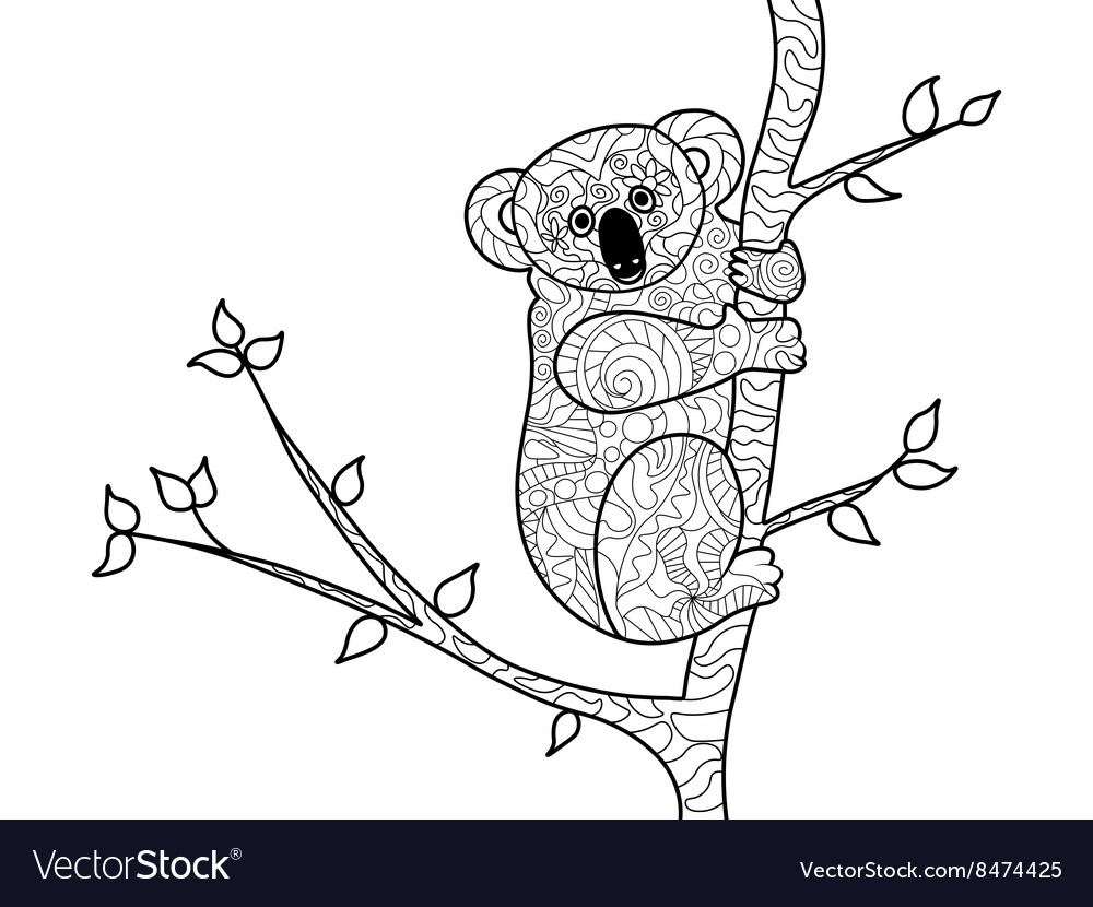 Koala Bear Coloring Book For Adults Royalty Free Vector