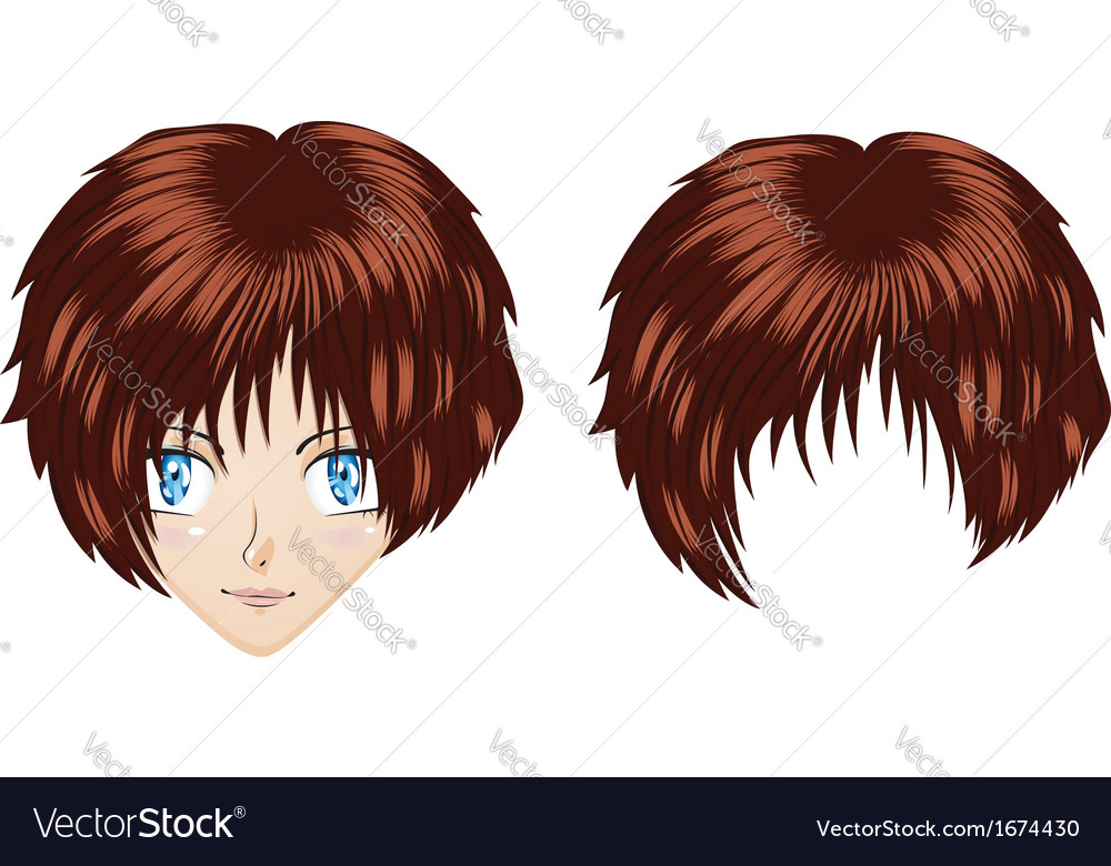 Anime brunette girl vector image